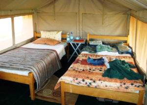 Nga'Mour Wilderness Camp