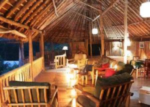 The Gorilla Resort